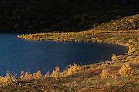 Autumn mountain landscape near lake Vikjordvatnet, Vestvågøy, Lofoten Islands, Norway