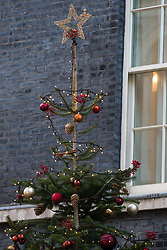 London, UK. 2 December, 2019. A star on the top of a Christmas tree outside 10 Downing Street supplied by family business Dartmoor Christmas Trees.