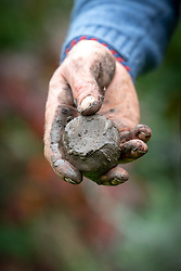 Soil sample test. Wet and roll soil into a ball then press with thumb. Glossy finish when pressed indicates a clay soil.