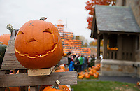 Pumpkin Fest brought thousands of visitors to downtown Laconia throughout the day on Saturday.  (Karen Bobotas/for the Laconia Daily Sun)