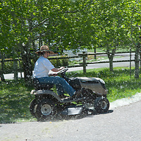 A woman mows a lawn near Bozeman, Montana that is choked with dandelions - a persistent weed.