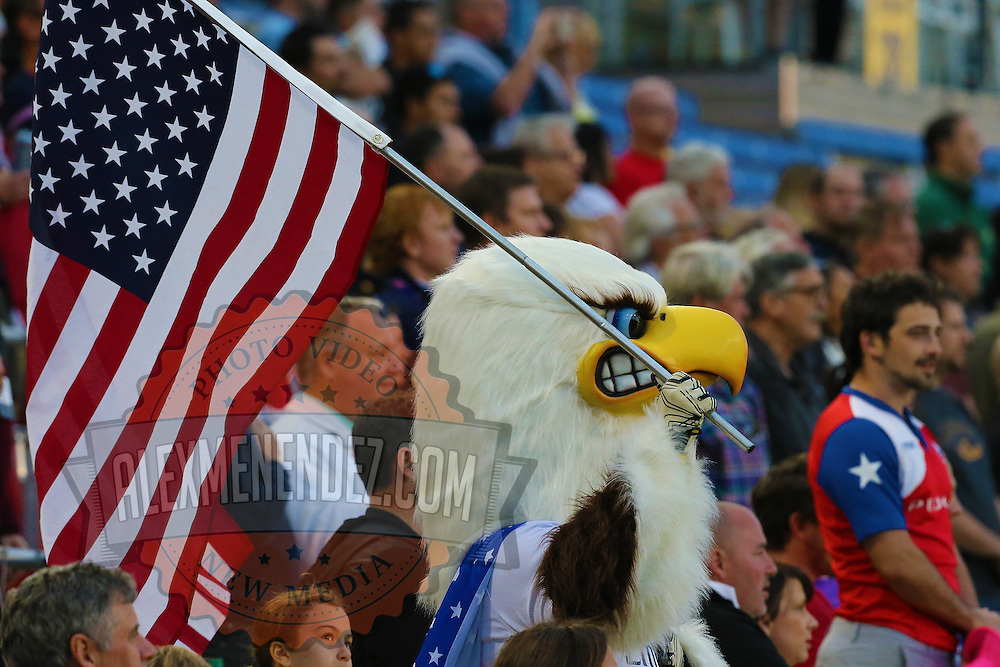 An eagle mascot is seen during the 2016 Americas Rugby Championship match at Lockhart Stadium on Saturday, February 20, 2016 in Fort Lauderdale, Florida.  (Alex Menendez via AP)