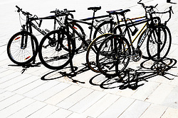 Bicycles in a bicycle rack.