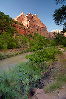 Zion National Park, located in the Southwestern United States, near Springdale, Utah.