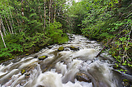 Sowerby Creek during spring runoff at Silver Lake Provincial Park near Hope, British Columbia, Canada