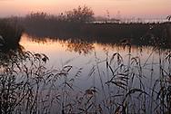 France, Languedoc Roussillon, Gard, Aigues-Mortes, l'étang de la Ville