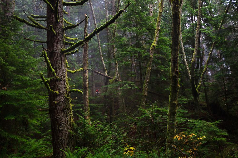 Owen Dudley rides in the mist of the Northwest Rainforest near Bellingham, WA.
