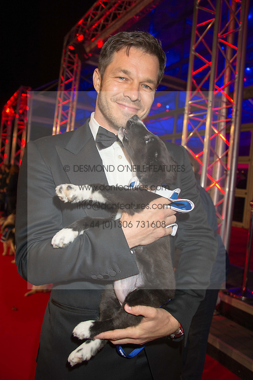 Actor PAUL SCULFOR at the Battersea Dogs & Cats Home's Collars & Coats Gala Ball held at Battersea Evolution, Battersea Park, London on 12th November 2015.