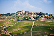 Hill Town of Panzano-in-Chianti, Tuscany, Italy RESERVED USE - NOT FOR DOWNLOAD - FOR USE CONTACT TIM GRAHAM