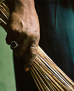Detail of caretaker holding a brush, The Great Imambara, Lucknow, Uttar Pradesh, India.