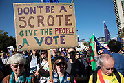 The People's Vote March For The Future on 20th October 2018 in London, United Kingdom. More than an estimated 500,000 people marched on Parliament to demand their democratic voice to be heard in a landmark demonstration billed as the most important protest of a generation. As the date of the UK's Brexit from the European Union, the protesters gathered in their tens of thousands to make political leaders take notice and to give the British public a vote on the final Brexit deal. (photo by Mike Kemp/In Pictures via Getty Images)