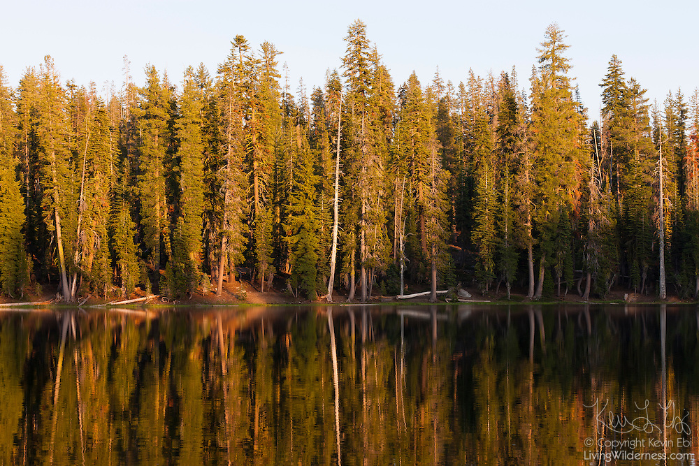 A variety of trees line the banks of Summit Lake in Lassen Volcanic National Park, California. Summit Lake is located at an elevation of 7,000 feet (2,066 meters) near the highest stretch of road in the Cascade mountain range.