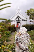 Statue bedecked with leis made of small shells, with St. Benedict's Roman Catholic Church, also known as the Painted Church, in the background. Honaunau, Kona, Big Island, Hawaii RIGHTS MANAGED LICENSE AVAILABLE FROM www.PhotoLibrary.com