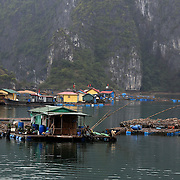 A Floating fishing village in Ha Long Bay, Vietnam. The bay consists of a dense cluster of 1,969 limestone monolithic islands. Ha Long Bay, is a UNESCO World Heritage Site, and a popular tourist destination. Ha Long, Bay, Vietnam. 11th March 2012. Photo Tim Clayton