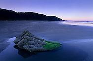 Rock in tidal zone along Enderts Beach, Crescent City, California