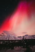 Alaska. Cantwell. aurora Borealis lights up the interior night sky.
