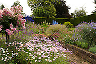 Sylvia's Garden, enclosed by Yew hedge, a brick path running through and planted with Rosa 'Ballerina' Delphiniums and Anthemis 'Summer Pink' at Newby Hall, Ripon, Yorkshire, UK