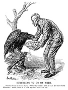 "Something to Go on With. President Wilson (to German eagle). ""Poor old bird! Did it say it was being starved? Well, here's a nice square meal for it."""