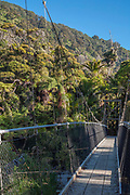 Scenic suspense bridges give way to sights of lush coastal forest along the Heaphy Track.