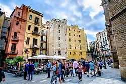 The Placa de Santa Maria, Barcelona, Catalonia, Spain<br /> <br /> (c) Andrew Wilson | Edinburgh Elite media