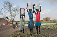 Wara Nyuku, from left, Ayol Awuat, and Atieng Aluong, carry water they've collected from the Nile in jerry cans they've received from CRS in Yolakot, South Sudan in Lake State where thousands have sought refuge after fleeing violence in neighboring Jonglei, State. An estimated 716,100 have been displaced in South Sudan with an additional 166,900 fleeing to neighboring countries as a result of conflict that erupted in mid-December 2013. The Nile has become a lifeline for the people who have sought shelter along its shores. Catholic Relief Services and Caritas Internationalis have been responding with latrines, hand washing stations, and emergency shelter kits and non food items such as kitchen materials and hygiene materials.