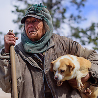 042415       Cable Hoover<br /> <br /> Claudia Sanders clings to one of her dogs as she watches a roundup of dogs on her property in Candy Kitchen Friday. Sanders was living with approximately 80 dogs before the roundup.