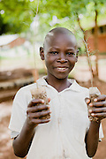 A young African boy holds tree saplings as  students practice sustainable gardening and agriculture at Kuna Primary School in North Kamagambo, Kenya.
