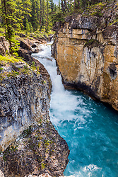 Beauty Creek Waterfall.  Beauty Creek is a beautiful slot canyon in Jasper National Park, home to a whole series of waterfalls.
