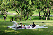 couple while relaxing in a park text messaging