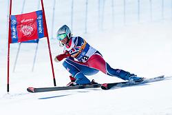 WHITLEY James, GBR, Giant Slalom, 2013 IPC Alpine Skiing World Championships, La Molina, Spain