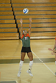 2006 Hurricanes Volleyball