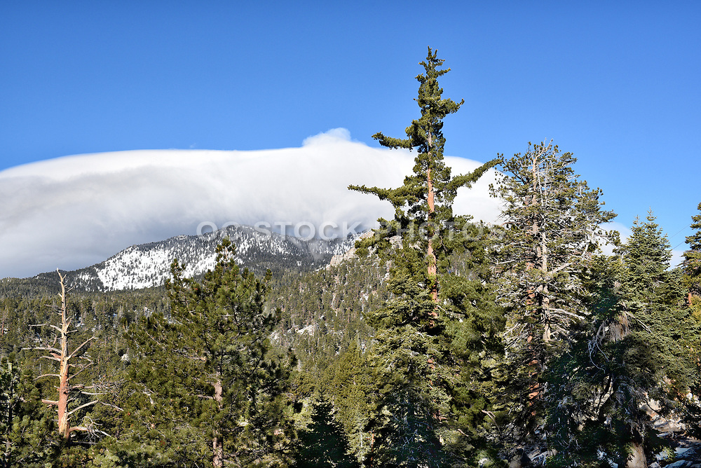 San Jacinto Mountains from Mountain Station of Palm Springs Aerial Tramway