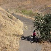 Exercising in the Santa Monica Mountains.