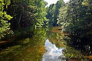 Fojutowo 2011-7-05. Wielki Kanał Brdy.