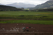 A farmer ploughs his field in a valley in the Cairngorm National Park. A lot of the Highlands are hills and mountains but in the valleys where the rivers run farmers still manages to work the land.