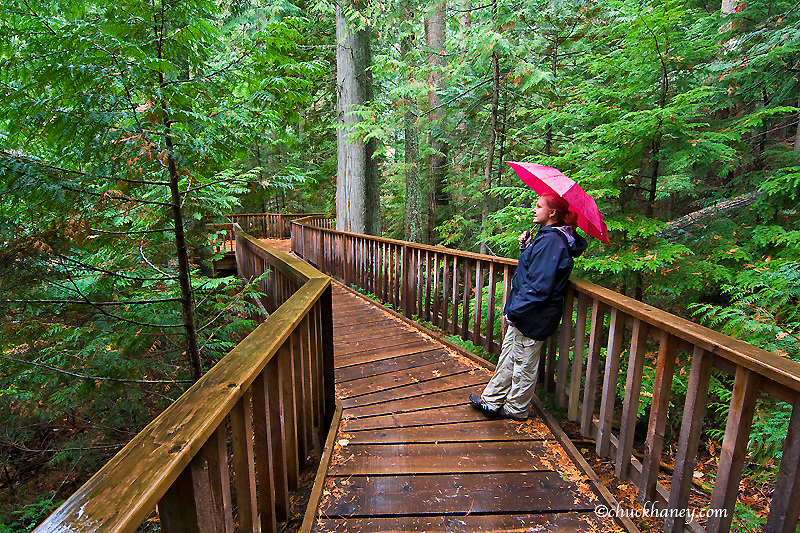 Spending a wet day on the Avalanche Creek Trail in Glacier National Park in Montana