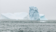 In the Southern Ocean, large floating icebergs are calved from Antarctic glaciers.