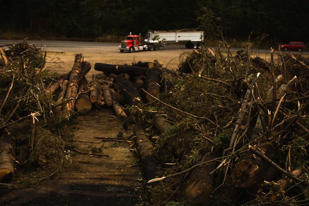 Sept. 14, 2017   Burnt tree that have been cut down for safety are piled on the side on the highway, seen during a media tour of I-84 to show the effects of the Eagle Creek Fire in the Columbia River Gorge in Oregon