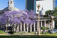 CATEDRAL Y PLAZA 25 DE MAYO, ARBOL DE JACARANDA FLORECIDO, CIUDAD DE BUENOS AIRES, ARGENTINA (PHOTO © MARCO GUOLI - ALL RIGHTS RESERVED)