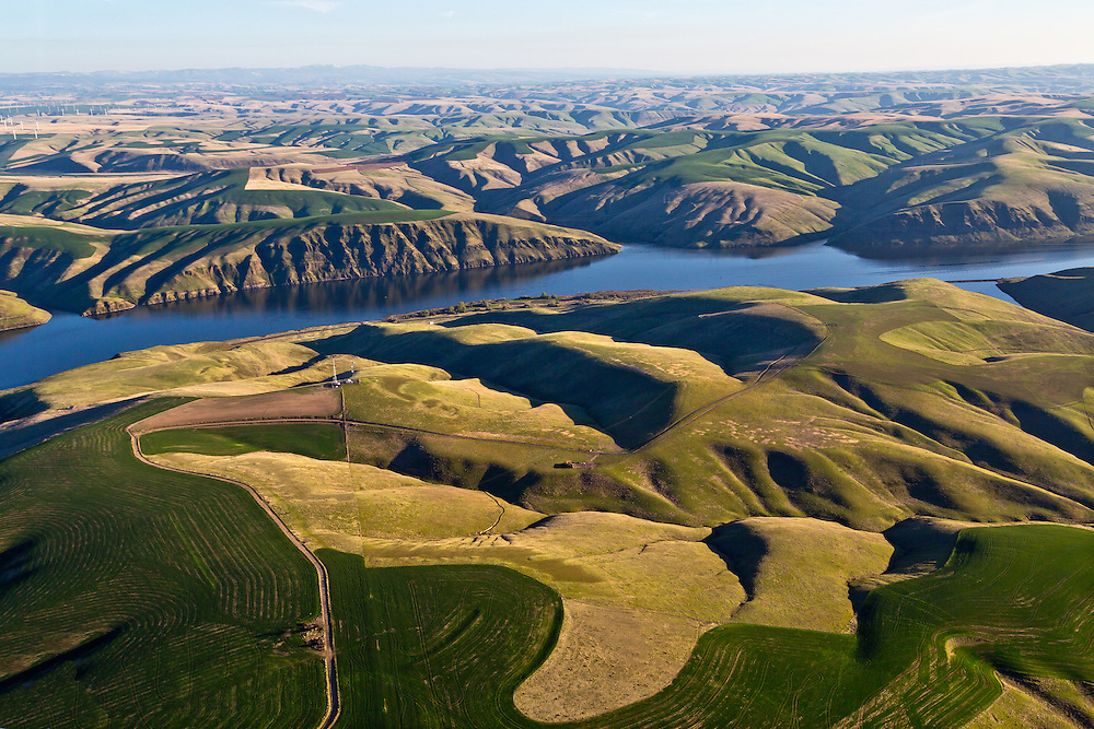 Aerial View of an Agriculture Mosaic of plowed fields and crop rotations on the rolling hills along the Snake River in Eastern Washington near Tri-Cities.  Licensing and Open Edition Prints.