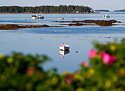 A canoe with an America flag sits in a bay in Beals Island, Maine.