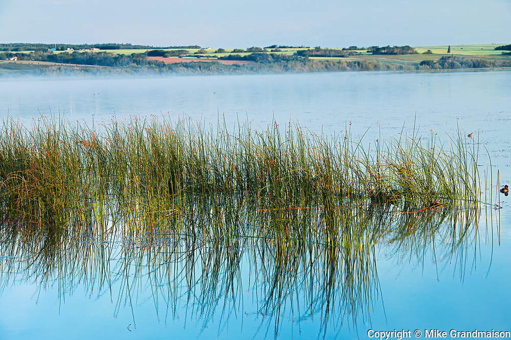 Saskatoon Lake<br />Saskatoon Island Provincial Park<br />Saskatchewan<br />Canada
