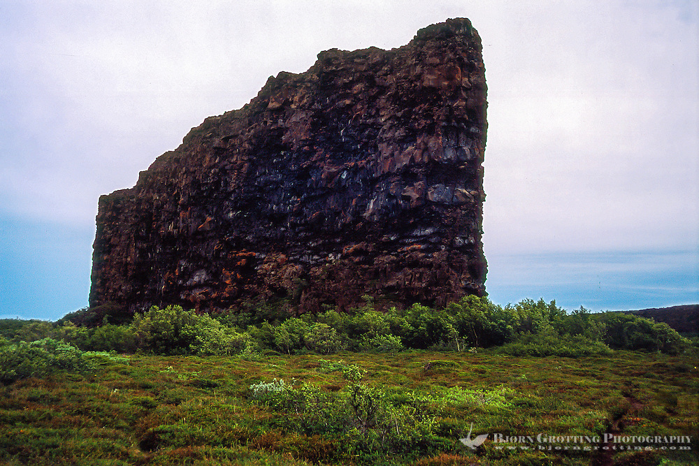 """Iceland. Ásbyrgi canyon is divided through the middle by rock 25 meters high called Eyjan (""""the Island"""")."""