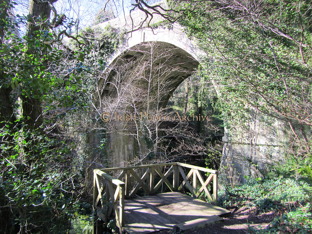Knocksink Bridge, Wicklow, 1859