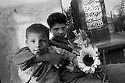 Cairo, Egypt, The City of the Dead, 2000 - boys playing among the graves have just helped at a funeral and now have extra flowers to carry around.