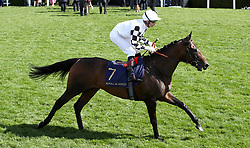 Royal Julius riden by Jockey Gerald Mosse goes to post for the Prince Of Wales's Stakes