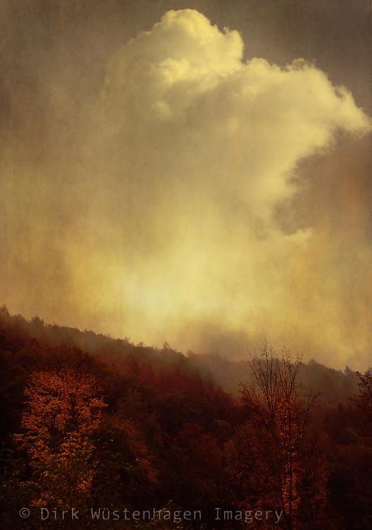 Misty autumn morning  - painterly image