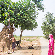 CAPTION: Locals come to charge their cell phones, which they've hooked up to a solar panel designed to power a street light in their village. LOCATION: Singhilpur, Saran District, Bihar, India. INDIVIDUAL(S) PHOTOGRAPHED: Unknown.