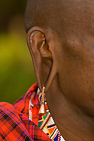 A Maasai warrior's stretched earlobe and earring, Amboseli National Park, Kenya