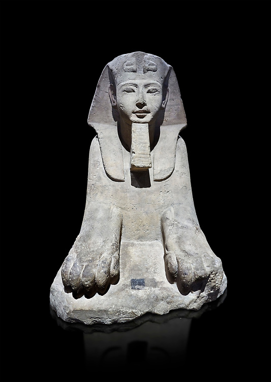 Ancient Egyptian Sphinx statue, sandstone, New Kingdom, early 19th Dynasty (1292-1250), Karnak, Temple of Amon. Egyptian Museum, Turin. black background<br /> <br /> This sphinx statue show signs of remodelling. the accentuated curves of the eyebrows, the almond shaped eyes and the wide mouth with fleshy lips are still influenced by the late 18th Dynasty style. The long aquiline nose however is typical of Ramesside. The lappets of the nemes headdress and the beard show clear traces of unfinished re-carving. Drovetti Collection. C1409 .<br /> <br /> If you prefer to buy from our ALAMY PHOTO LIBRARY  Collection visit : https://www.alamy.com/portfolio/paul-williams-funkystock/ancient-egyptian-art-artefacts.html  . Type -   Turin   - into the LOWER SEARCH WITHIN GALLERY box. Refine search by adding background colour, subject etc<br /> <br /> Visit our ANCIENT WORLD PHOTO COLLECTIONS for more photos to download or buy as wall art prints https://funkystock.photoshelter.com/gallery-collection/Ancient-World-Art-Antiquities-Historic-Sites-Pictures-Images-of/C00006u26yqSkDOM